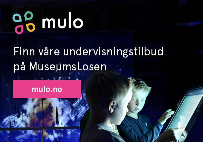 Museumslosen- finn skoleopplegg